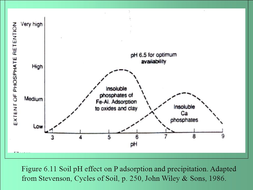 Figure Soil pH effect on P adsorption and precipitation
