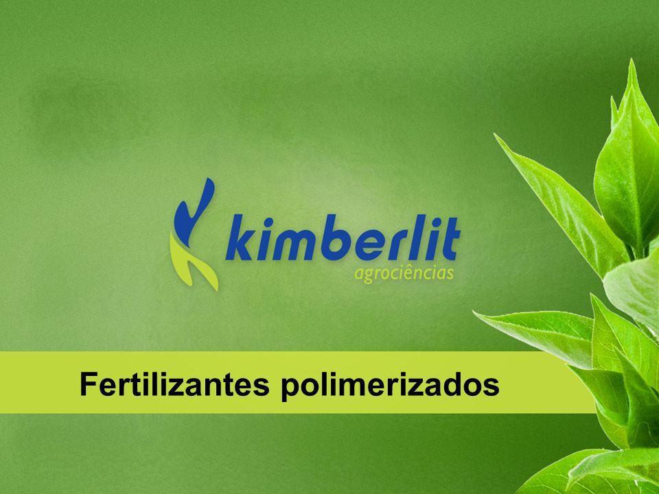 Fertilizantes polimerizados