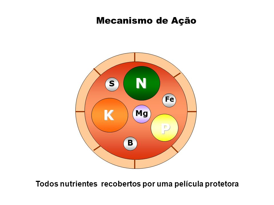 Todos nutrientes recobertos por uma película protetora