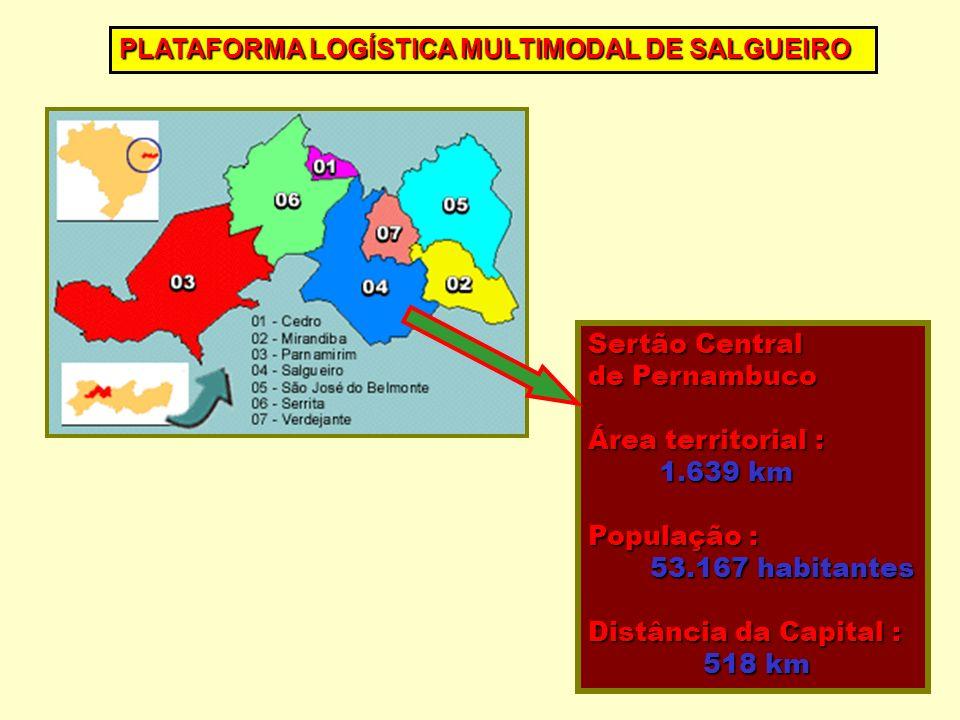 PLATAFORMA LOGÍSTICA MULTIMODAL DE SALGUEIRO