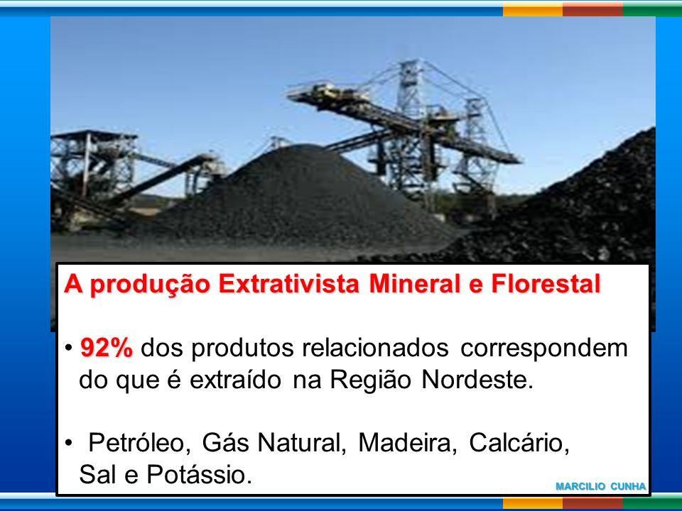 A produção Extrativista Mineral e Florestal