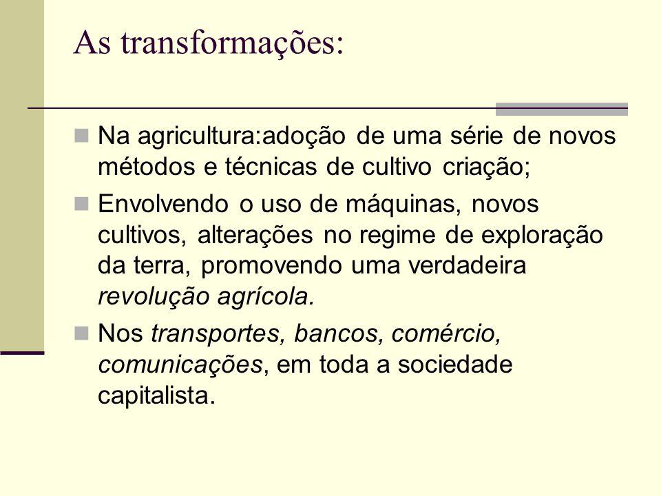 As transformações: Na agricultura:adoção de uma série de novos métodos e técnicas de cultivo criação;