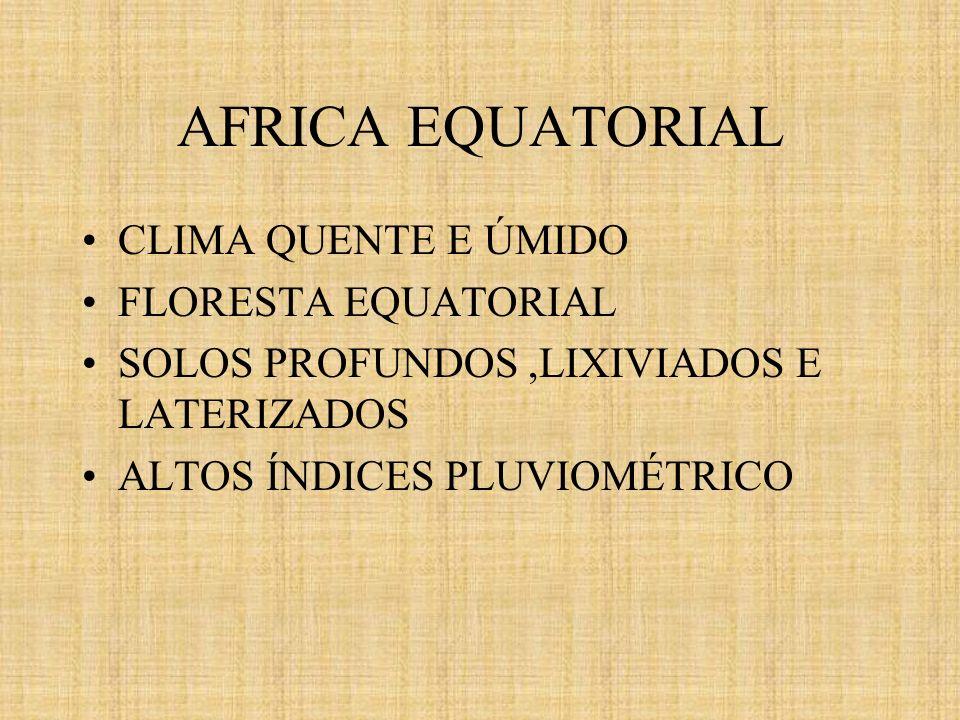 AFRICA EQUATORIAL CLIMA QUENTE E ÚMIDO FLORESTA EQUATORIAL