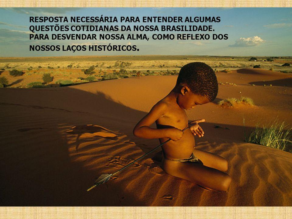RESPOSTA NECESSÁRIA PARA ENTENDER ALGUMAS QUESTÕES COTIDIANAS DA NOSSA BRASILIDADE.