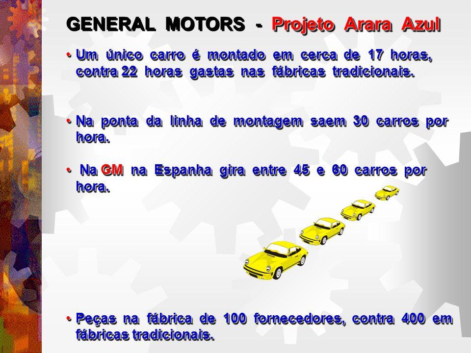 GENERAL MOTORS - Projeto Arara Azul