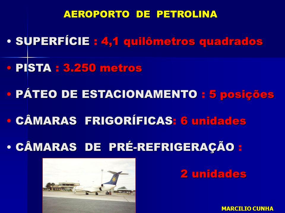 SUPERFÍCIE : 4,1 quilômetros quadrados PISTA : 3.250 metros
