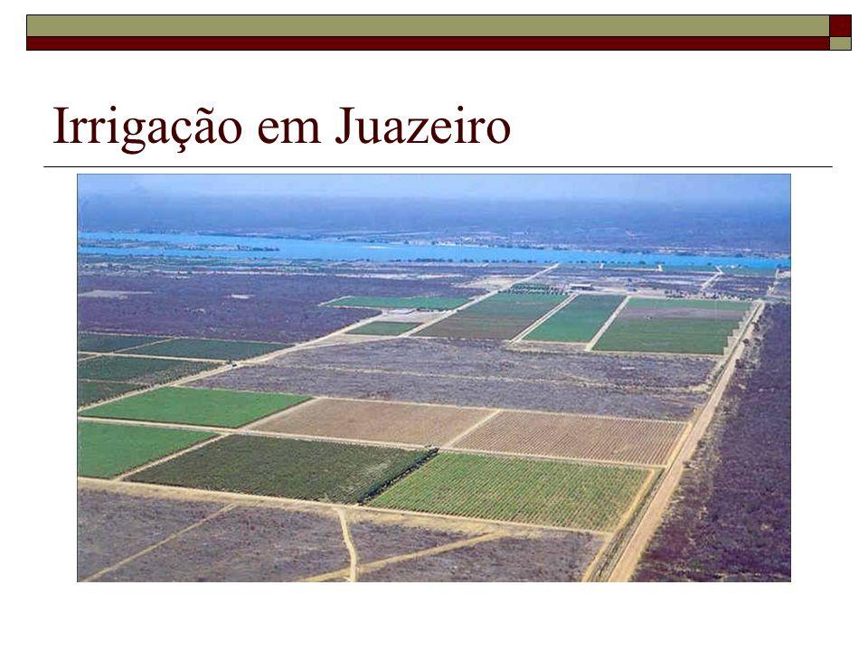 Irrigação em Juazeiro
