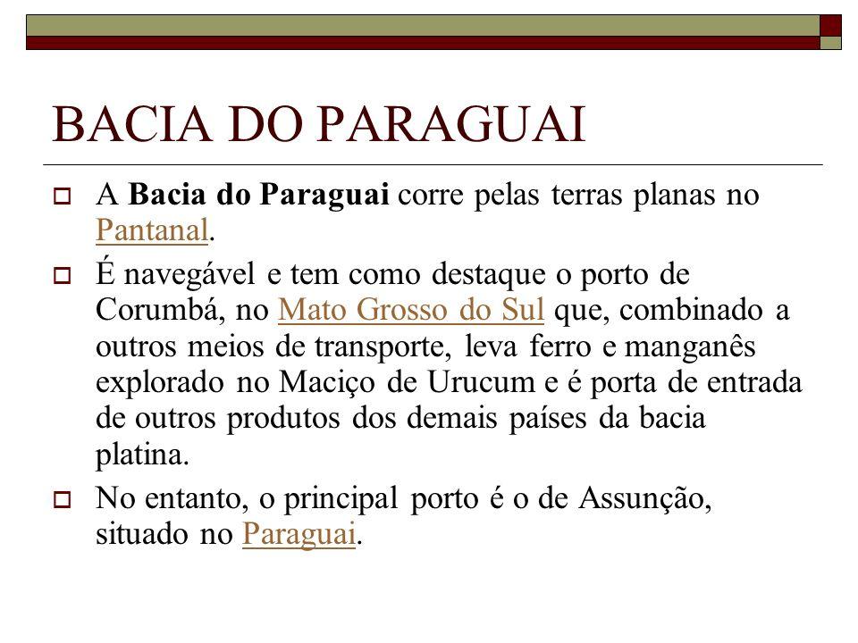 BACIA DO PARAGUAI A Bacia do Paraguai corre pelas terras planas no Pantanal.