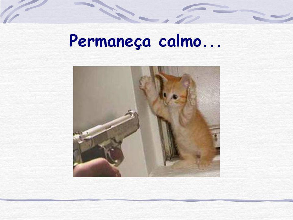 Permaneça calmo...