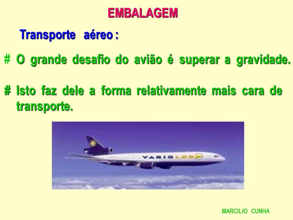 # O grande desafio do avião é superar a gravidade.