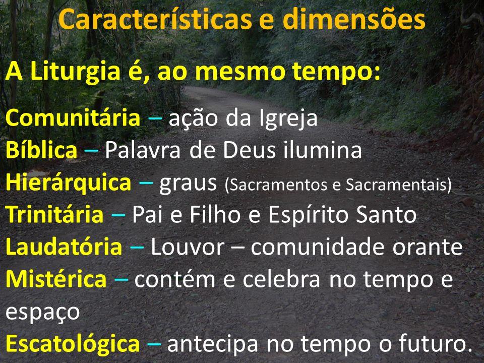Características e dimensões