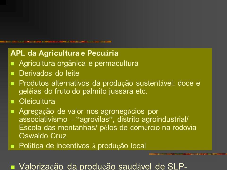 Valorização da produção saudável de SLP-Marketing