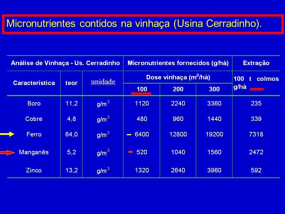 Micronutrientes contidos na vinhaça (Usina Cerradinho).