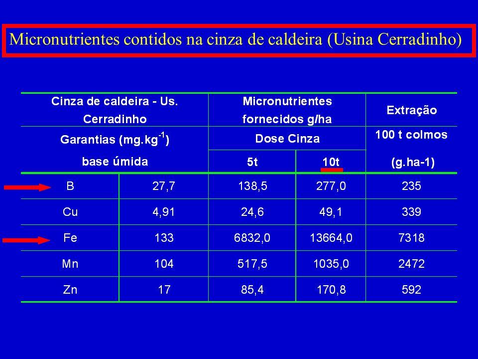 Micronutrientes contidos na cinza de caldeira (Usina Cerradinho)