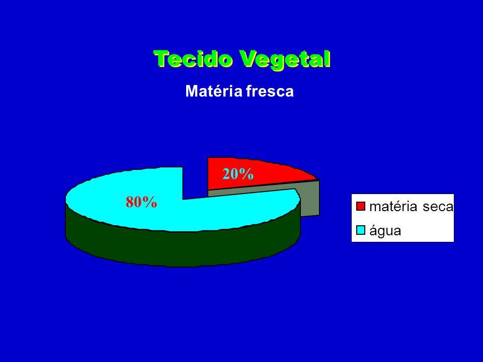 Tecido Vegetal Matéria fresca 20% 80% matéria seca água