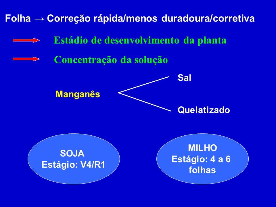 Estádio de desenvolvimento da planta Concentração da solução