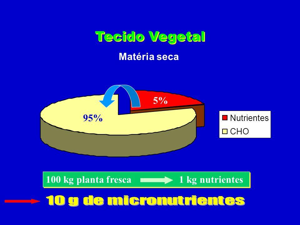 Tecido Vegetal Matéria seca 5% 95%