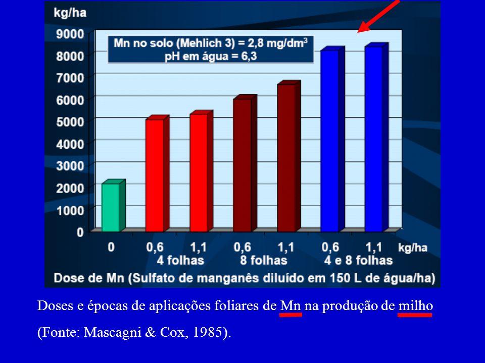 Doses e épocas de aplicações foliares de Mn na produção de milho