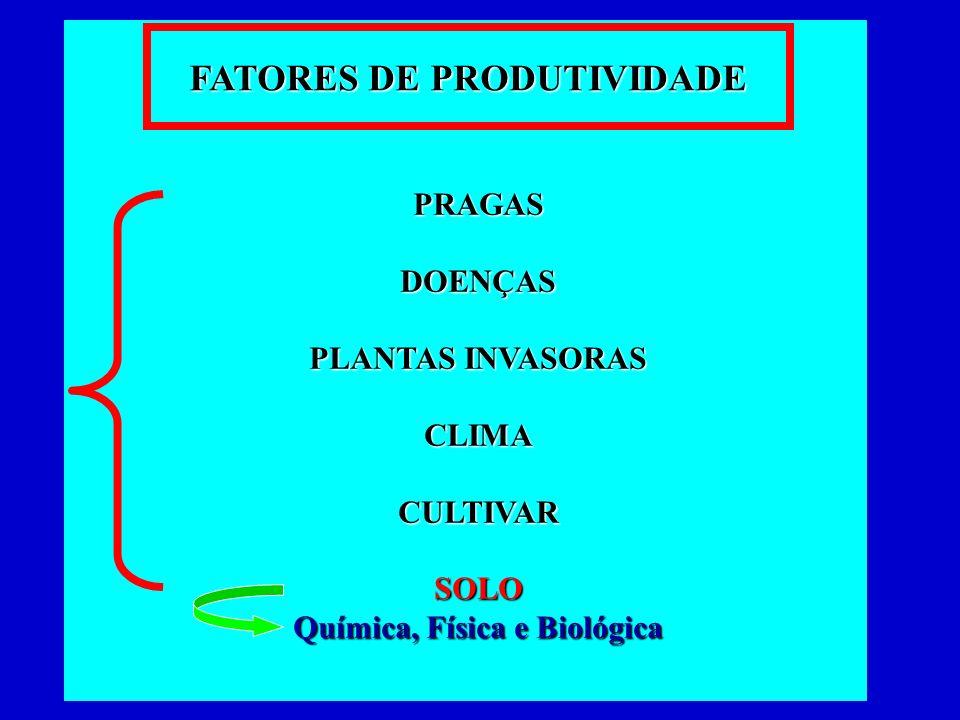 FATORES DE PRODUTIVIDADE Química, Física e Biológica