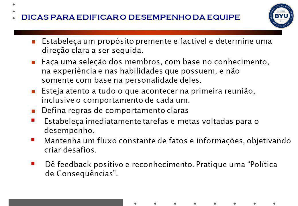 DICAS PARA EDIFICAR O DESEMPENHO DA EQUIPE