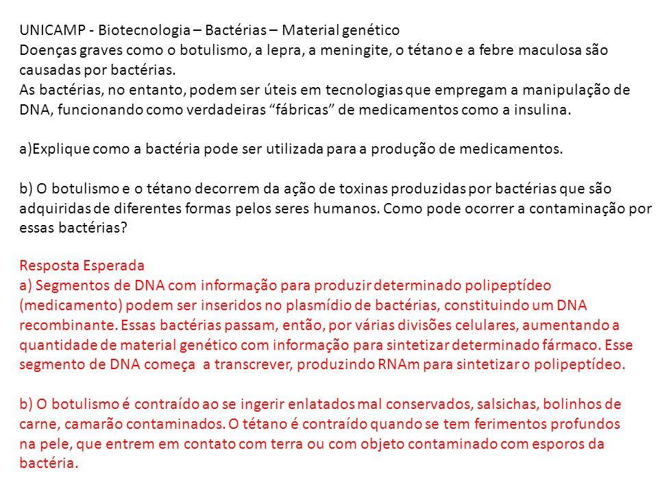 UNICAMP - Biotecnologia – Bactérias – Material genético