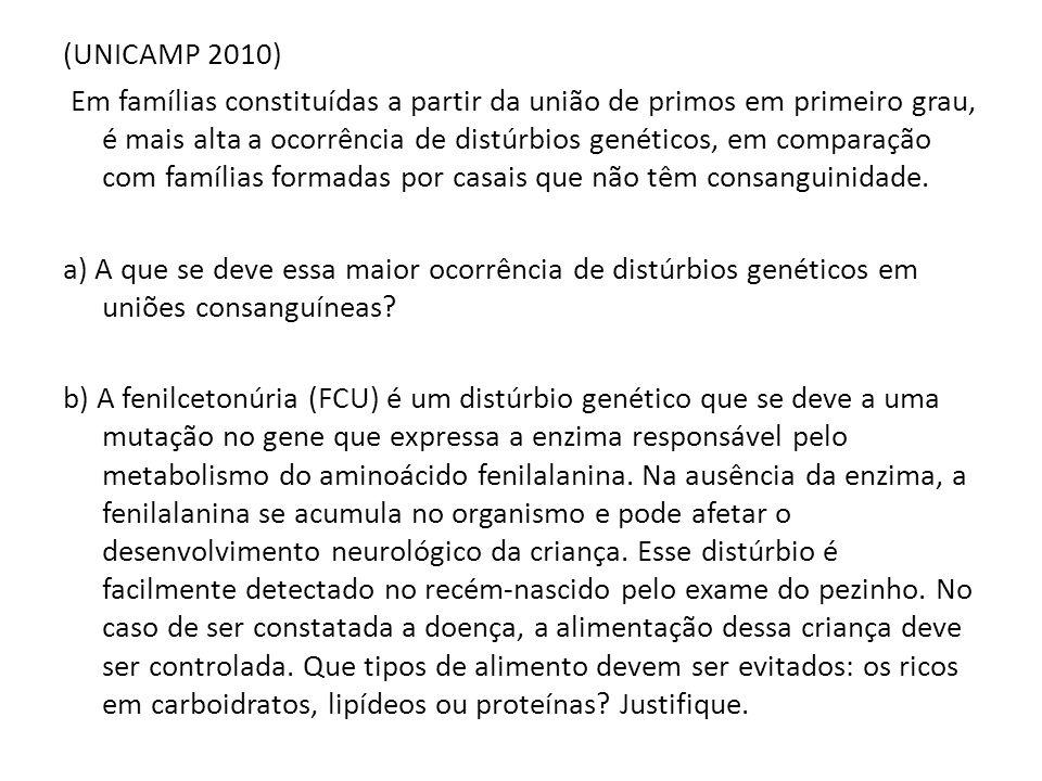 (UNICAMP 2010)