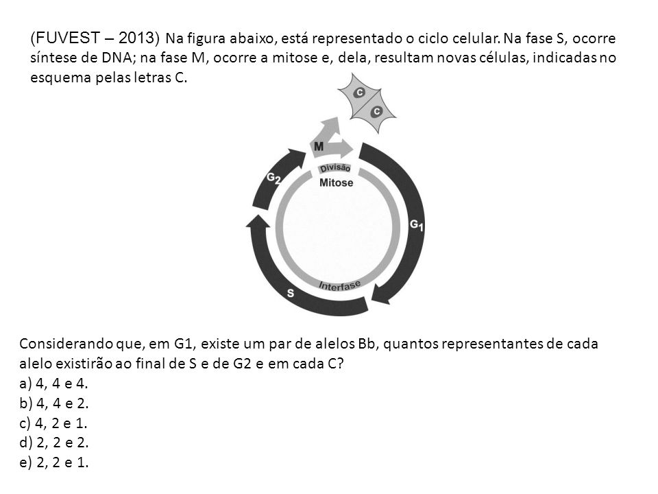(FUVEST – 2013) Na figura abaixo, está representado o ciclo celular