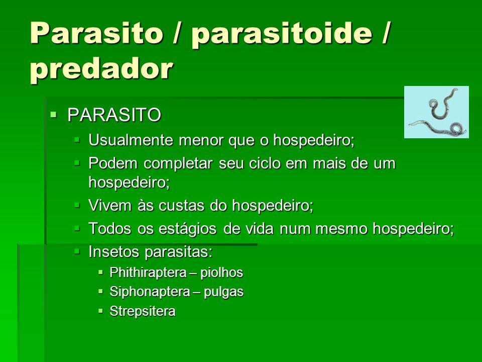 Parasito / parasitoide / predador