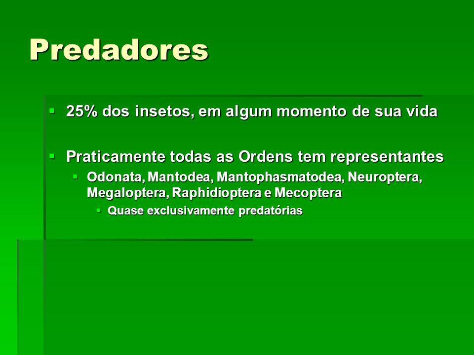 Predadores 25% dos insetos, em algum momento de sua vida