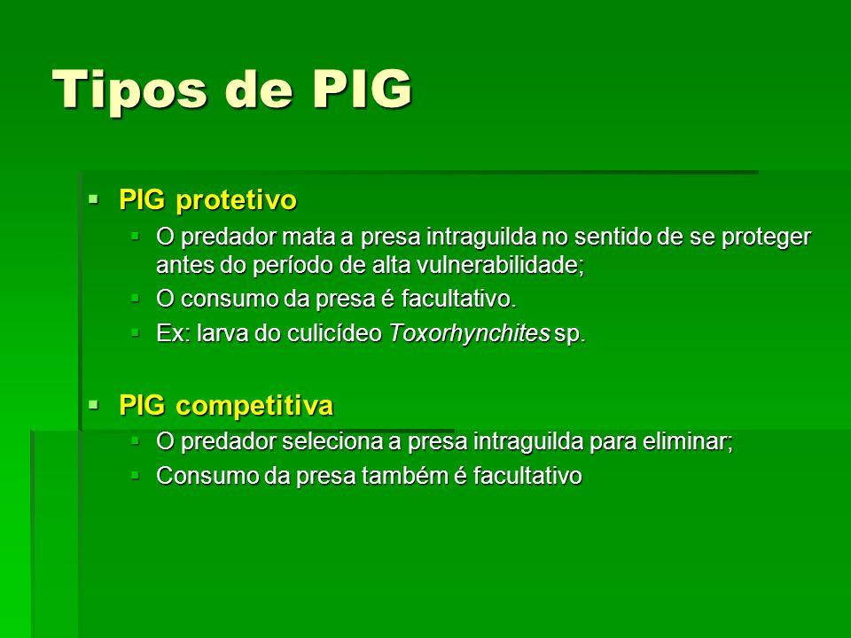 Tipos de PIG PIG protetivo PIG competitiva