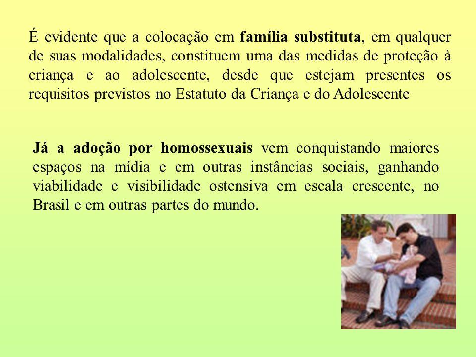 É evidente que a colocação em família substituta, em qualquer de suas modalidades, constituem uma das medidas de proteção à criança e ao adolescente, desde que estejam presentes os requisitos previstos no Estatuto da Criança e do Adolescente
