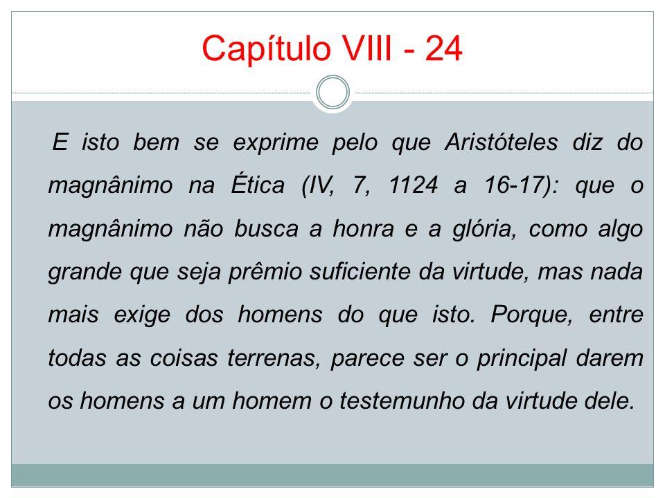 Capítulo VIII - 24