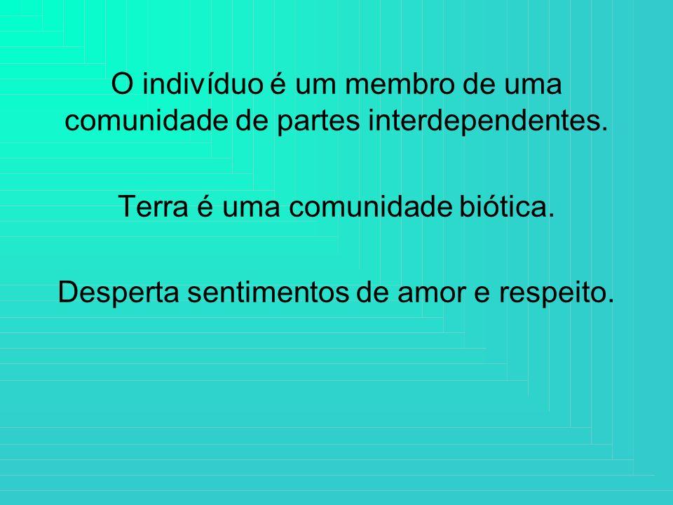 O indivíduo é um membro de uma comunidade de partes interdependentes.