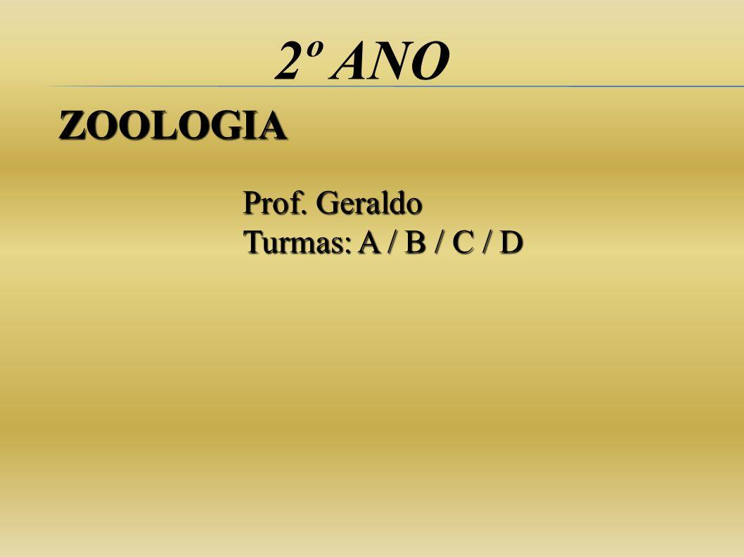 2º ANO ZOOLOGIA Prof. Geraldo Turmas: A / B / C / D
