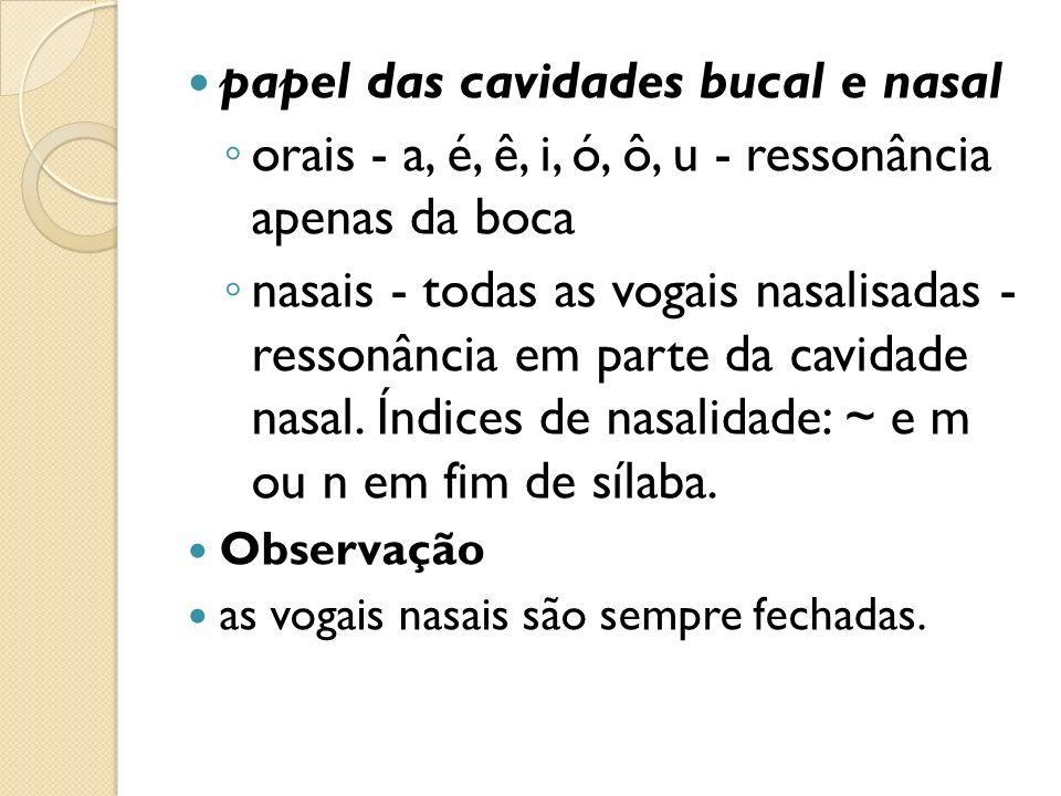 papel das cavidades bucal e nasal
