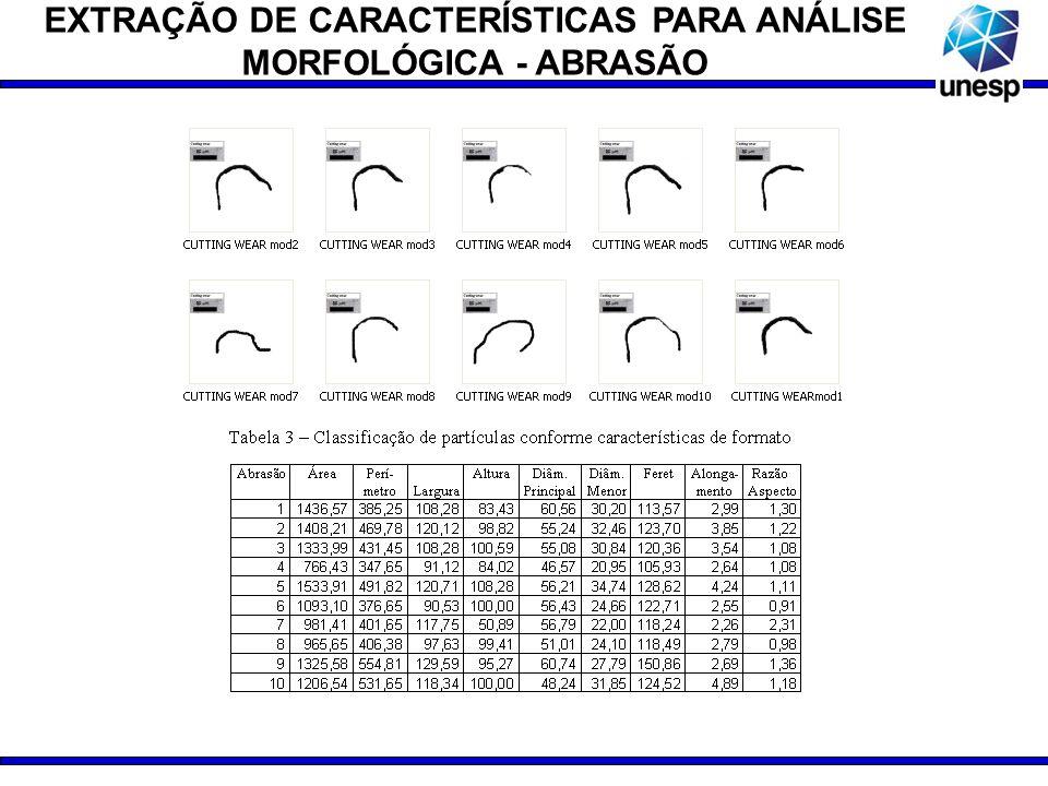EXTRAÇÃO DE CARACTERÍSTICAS PARA ANÁLISE MORFOLÓGICA - ABRASÃO