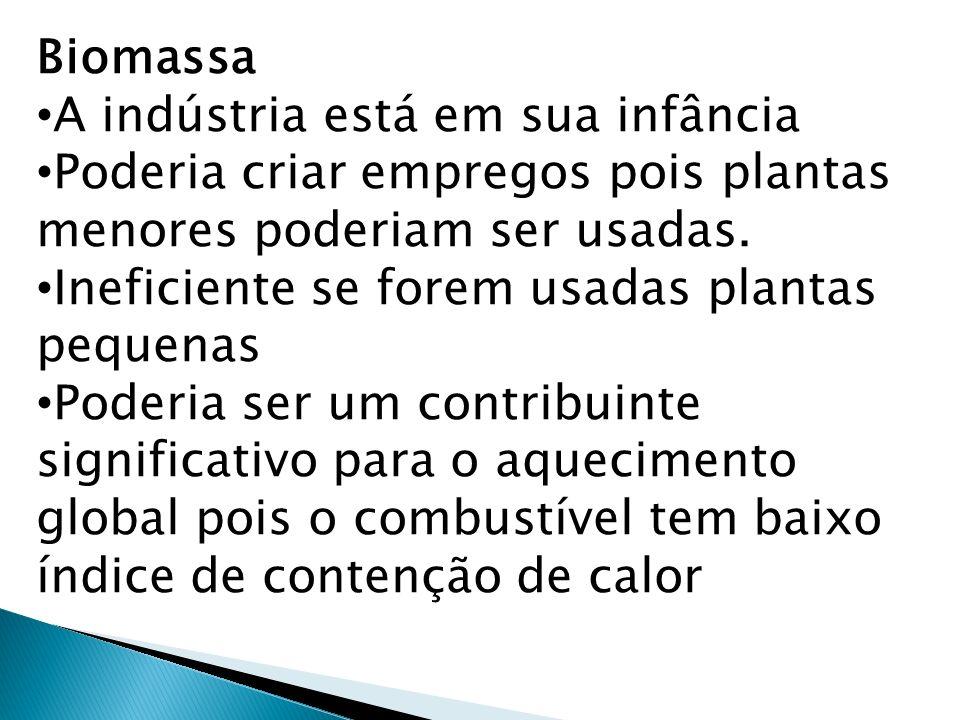 Biomassa A indústria está em sua infância Poderia criar empregos pois plantas menores poderiam ser usadas.