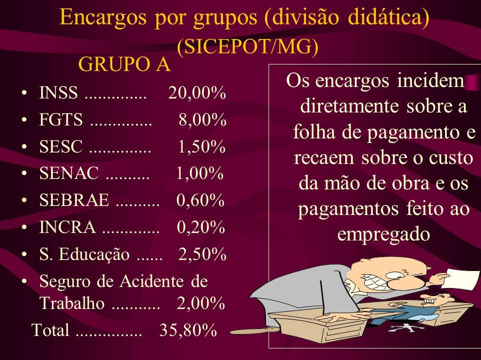 Encargos por grupos (divisão didática) (SICEPOT/MG)