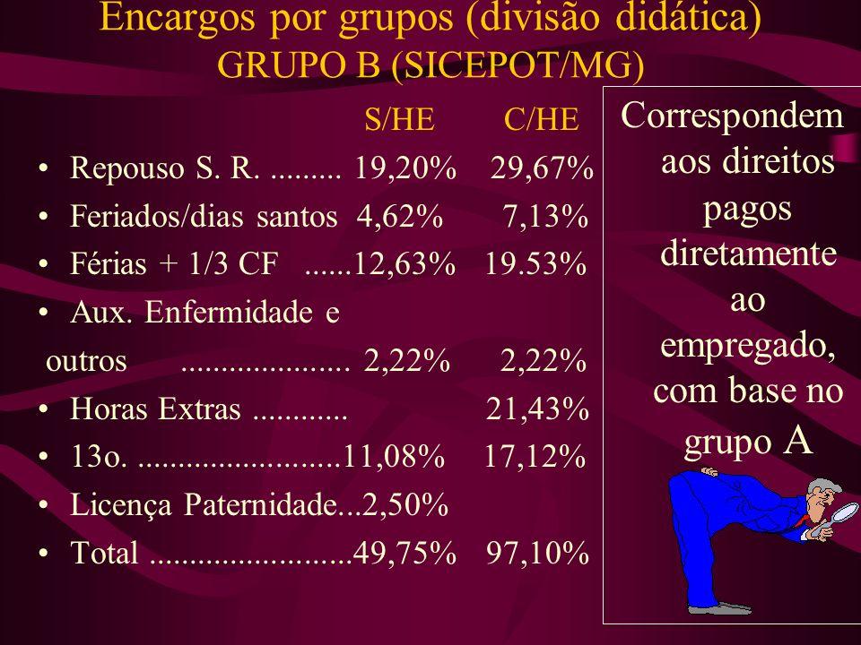 Encargos por grupos (divisão didática) GRUPO B (SICEPOT/MG)