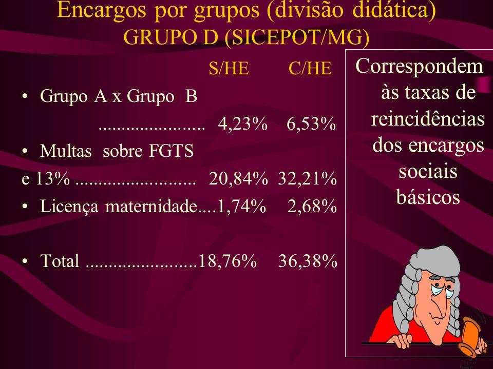 Encargos por grupos (divisão didática) GRUPO D (SICEPOT/MG)
