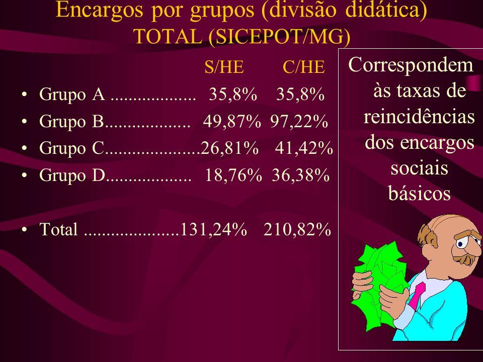 Encargos por grupos (divisão didática) TOTAL (SICEPOT/MG)