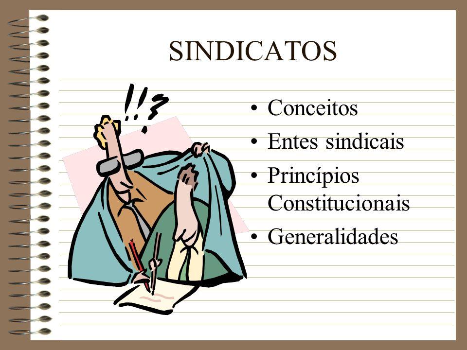 SINDICATOS Conceitos Entes sindicais Princípios Constitucionais