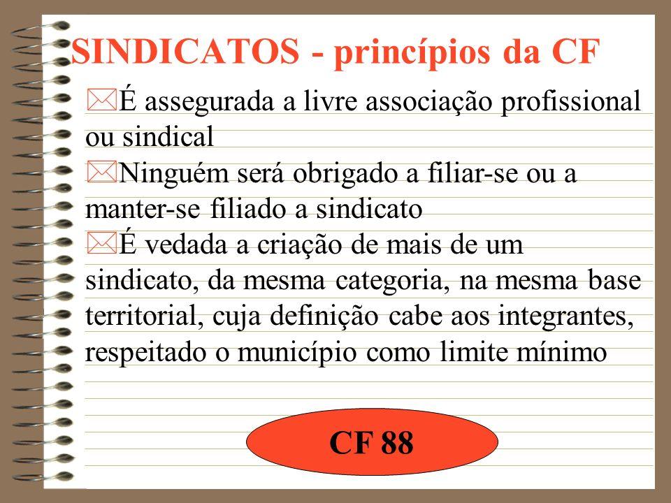 SINDICATOS - princípios da CF