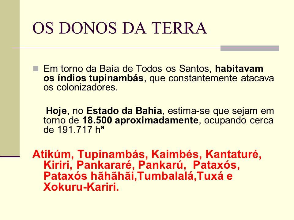 OS DONOS DA TERRA Em torno da Baía de Todos os Santos, habitavam os índios tupinambás, que constantemente atacava os colonizadores.