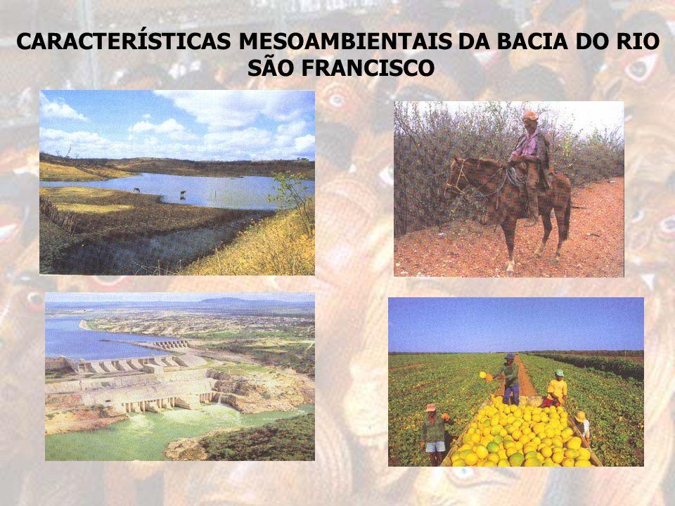 CARACTERÍSTICAS MESOAMBIENTAIS DA BACIA DO RIO