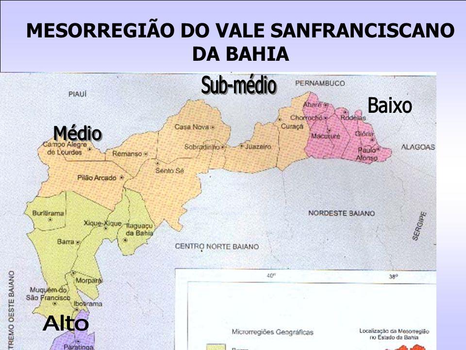 MESORREGIÃO DO VALE SANFRANCISCANO