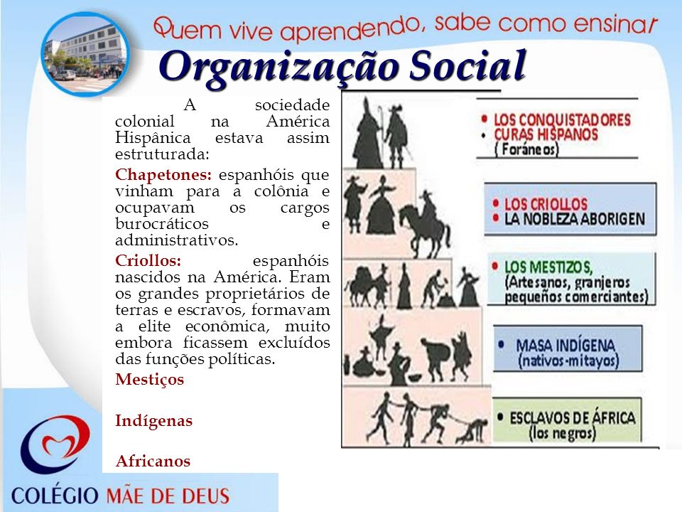 Organização SocialA sociedade colonial na América Hispânica estava assim estruturada: