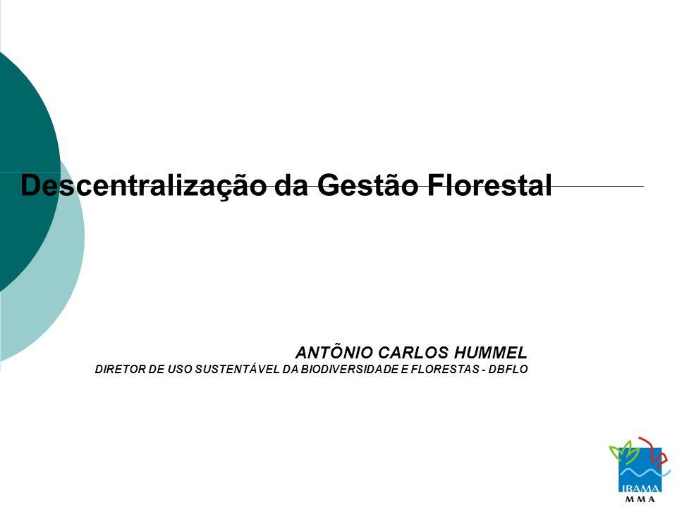 Descentralização da Gestão Florestal