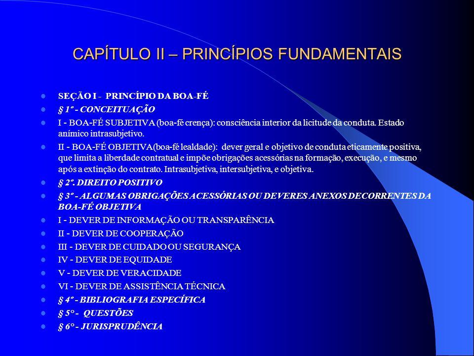 CAPÍTULO II – PRINCÍPIOS FUNDAMENTAIS