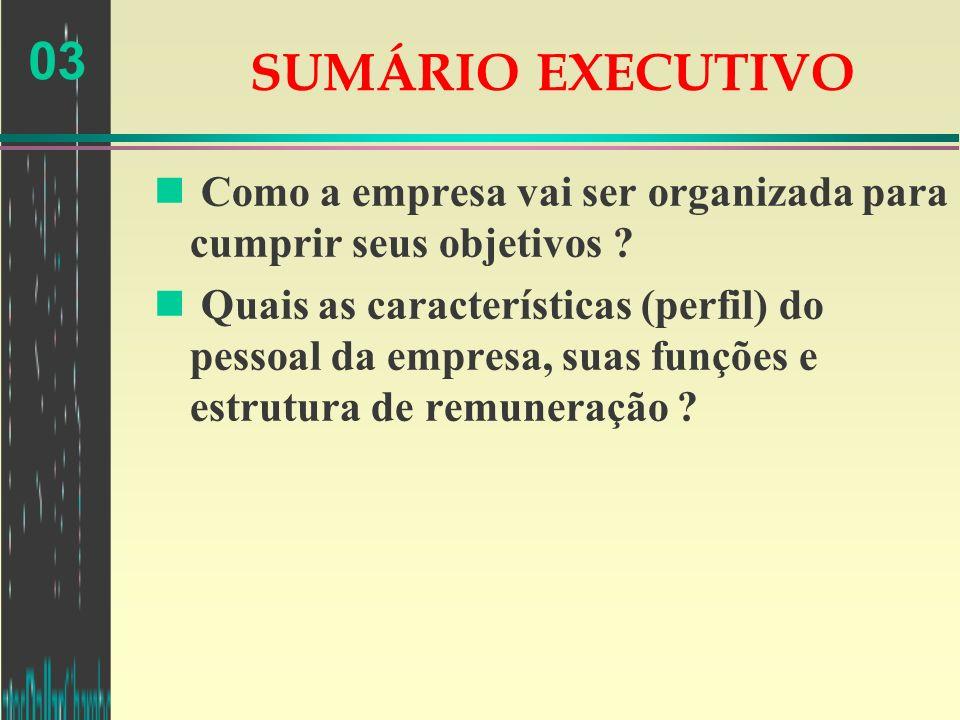 SUMÁRIO EXECUTIVO Como a empresa vai ser organizada para cumprir seus objetivos
